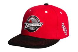 Бейсболка | ХК «Донбас» HCDD | Образец | Premium
